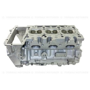 Inst. Zylinderkopf Audi A6 2.4  BDW  06E103068LX 06E103904AX cylinder head