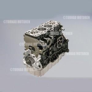 Inst. Kurbeltrieb Motor Industrie Stapler 2.0 TDI CJDA engine short block