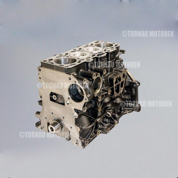 Motor Kurbeltrieb Audi Skoda Seat VW 1.9 TDI 8V AGR ALH ASY ARD short block