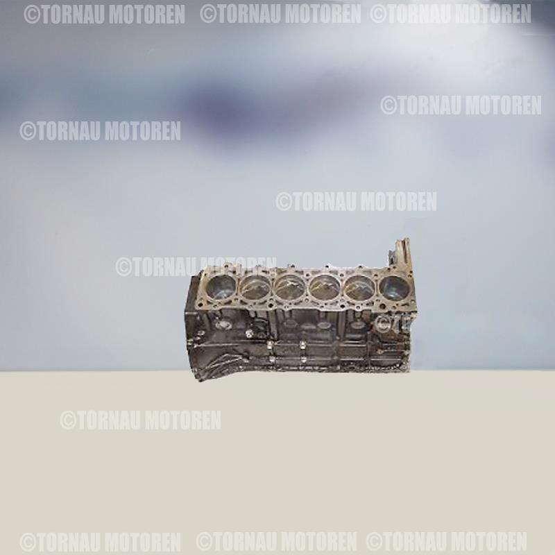 Short Block engine Mercedes W124 3 0 TD OM603960 OM603961 OM603963 OM603